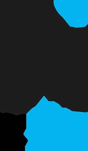 SSIB_logo_klein